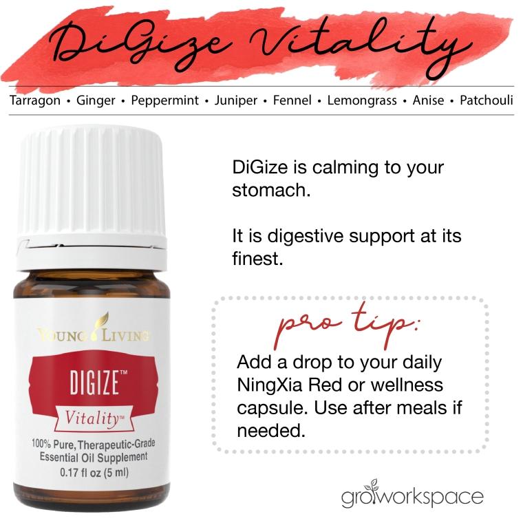 DiGize Vitality individual